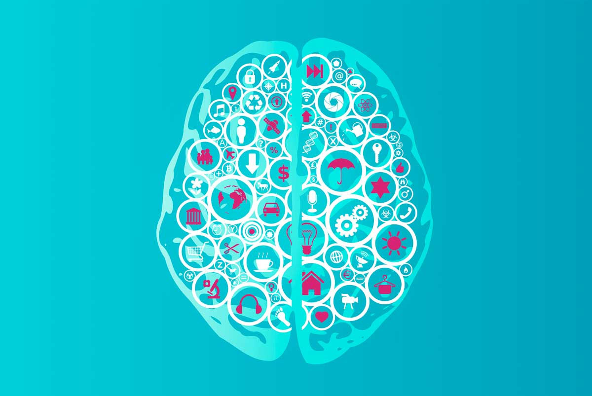 stockvault-brain-functions-as-app-icons183796_web